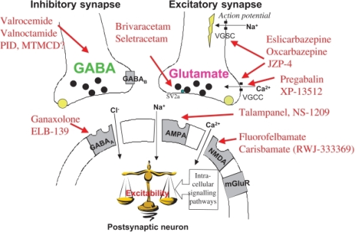 gabapentin-mechanism